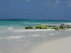 Aruba 060