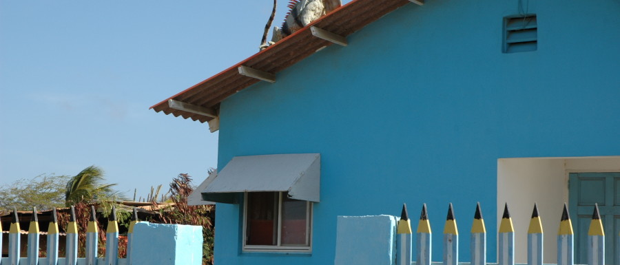 Aruba 2006, Globetrottern