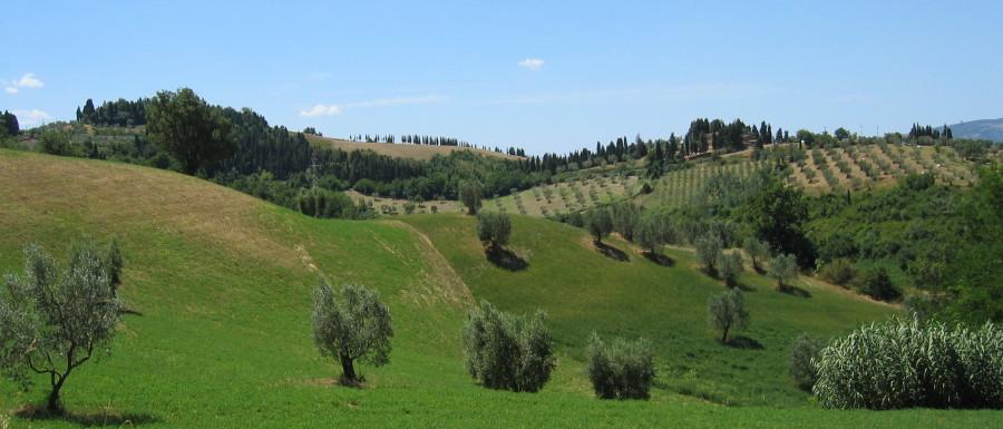 Toscana 2003, Globetrottern