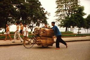 Vietnam reseskildring