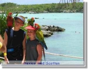 Mexico reseskildring Xel Ha parken