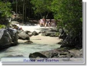 Mexico Xel-Ha 2004, Globetrottern