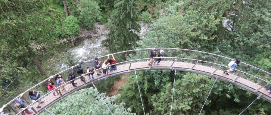 Cliff Walk Capilano Park Vancouver